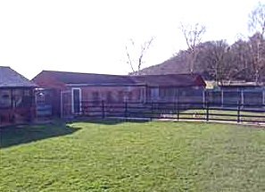 Secure Grassed Exercise Areas