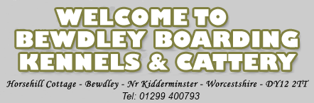 Welcome to Bewdley Boarding Kennels & Cattery with adress and phone number